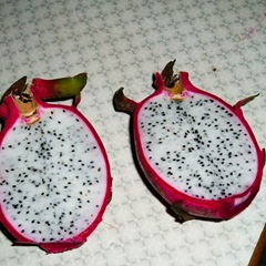 050527-dragon-fruit-inside