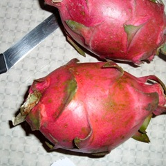 050527-dragon-fruit