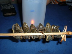 060403-grilled-frogs-on-a-stick