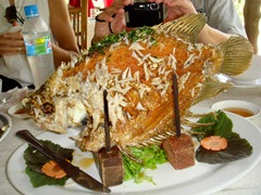 080128-tasty-fish