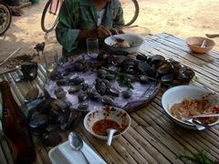 070427-clams-3